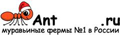 Муравьиные фермы AntFarms.ru - Смоленск
